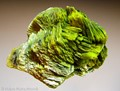 Autunite