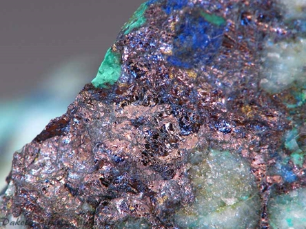 Bornite from Gold Hill mine, Tooele Co., Utah, United States - PD33626