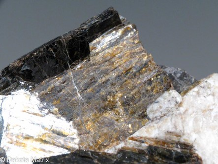 Astrophyllite - PD39994