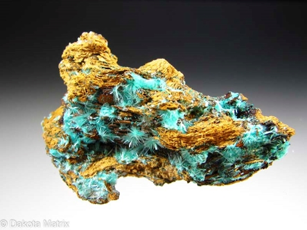 Aurichalcite from Chief mine, Empire dist., Pima Co., Arizona, United States - AH51561