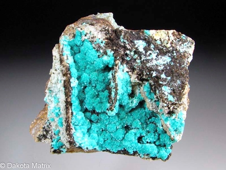 Aurichalcite from Kelly mine, Socorro Co., New Mexico, United States - AH51674