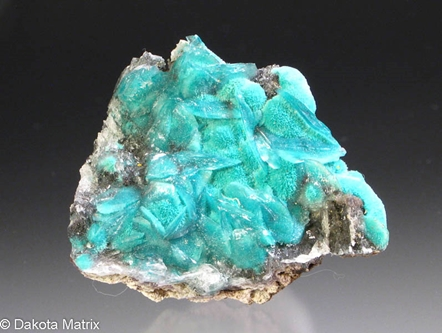 Aurichalcite from Worlds Fair claims, Granite Gap, Hildalgo Co., New Mexico, United States - AH51844