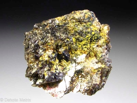 Autunite from Hyatt Ranch, Larimer Co., Colorado, United States - 55516