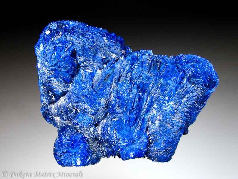 Azurite Mineral Specimen For Sale