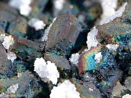 CHALCOPYRITE from Leonard mine, Butte dist., Silver Bow Co., Montana, United States - PD31474