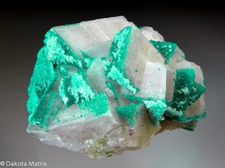 Dioptase from Tsumeb mine, Tsumeb, Namibia - 42751
