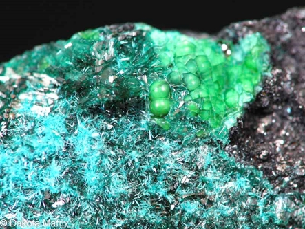 Dioptase from Cerro Negro Mine, Chanaral Province, Chile - 50129