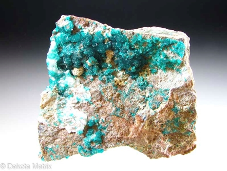 Dioptase from Christmas mine, Gila Co., Arizona, United States - 51594