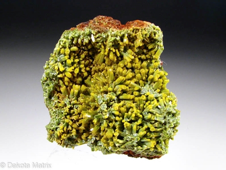 Pyromorphite from Wheatley mine, Chester Co., Pennsylvania, United States - 51654