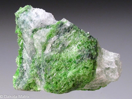 Tremolite from Gouverneur mine, Fowler, St. Lawrence Co., New York, United States - 55462