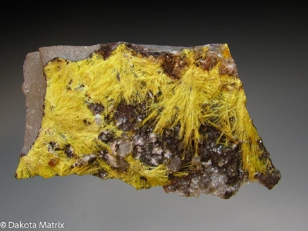 Uranophane from Grants dist., McKinley Co., New Mexico, United States - PD35481