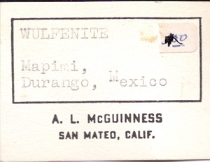 WULFENITE from Mapimi dist., Durango, Mexico - PD31608